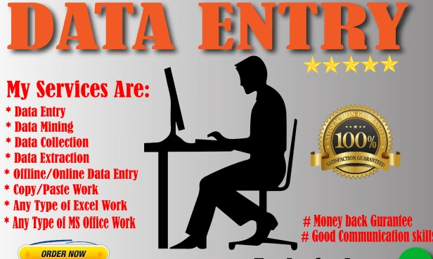 I Will do all kind of Data Entry work along with Internet Reseaarches