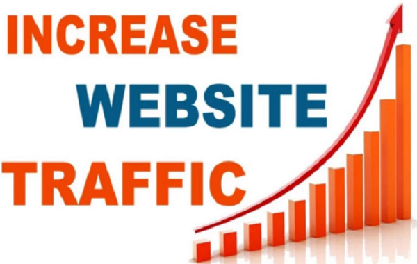 I will send real human traffic to your link