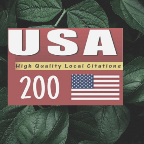 I will Do 25 live USA local citaions manually for your business