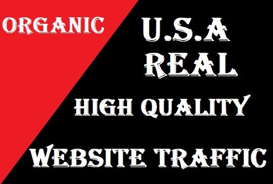Send 5000 High Quality USA Targeted Website Traffic