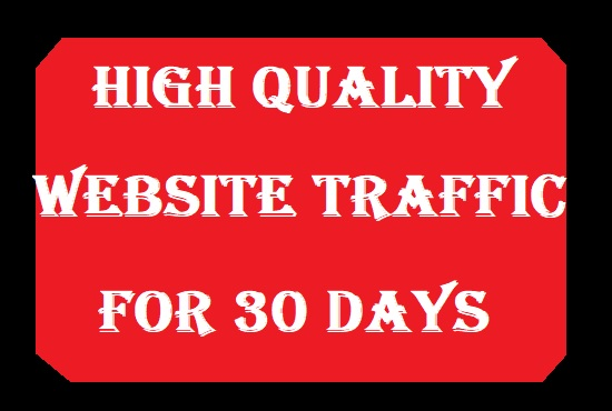High Quality Website traffic for 30 days