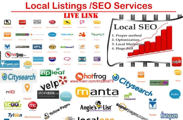 I will do Best 80 USA citations for local SEO