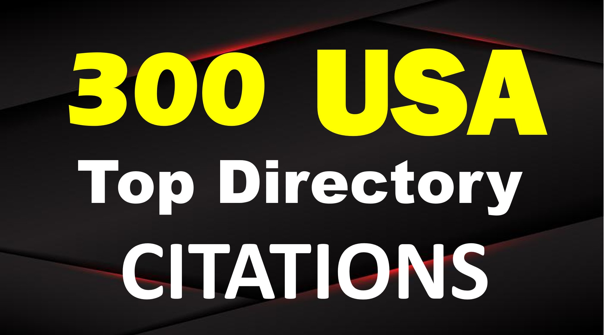I will 300 USA local citations and business directories
