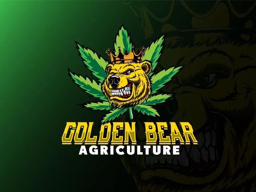 I will do gfx,  mascot professional logo design in 12 hours