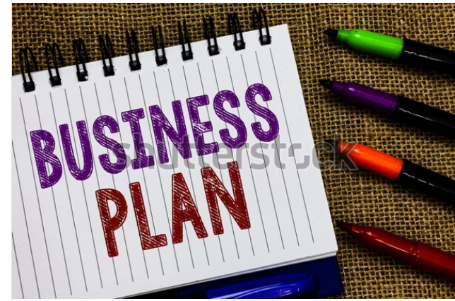 I will write a professional business plan