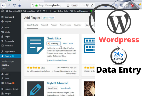 I will do wordpress data entry and blog post