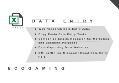 Data Entry Excell,  Web Search,  Data Allocation