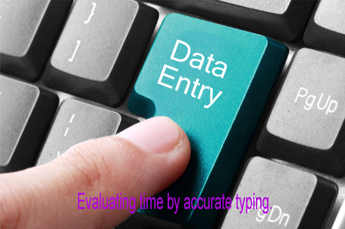 I will do professional Data Entry for any organization