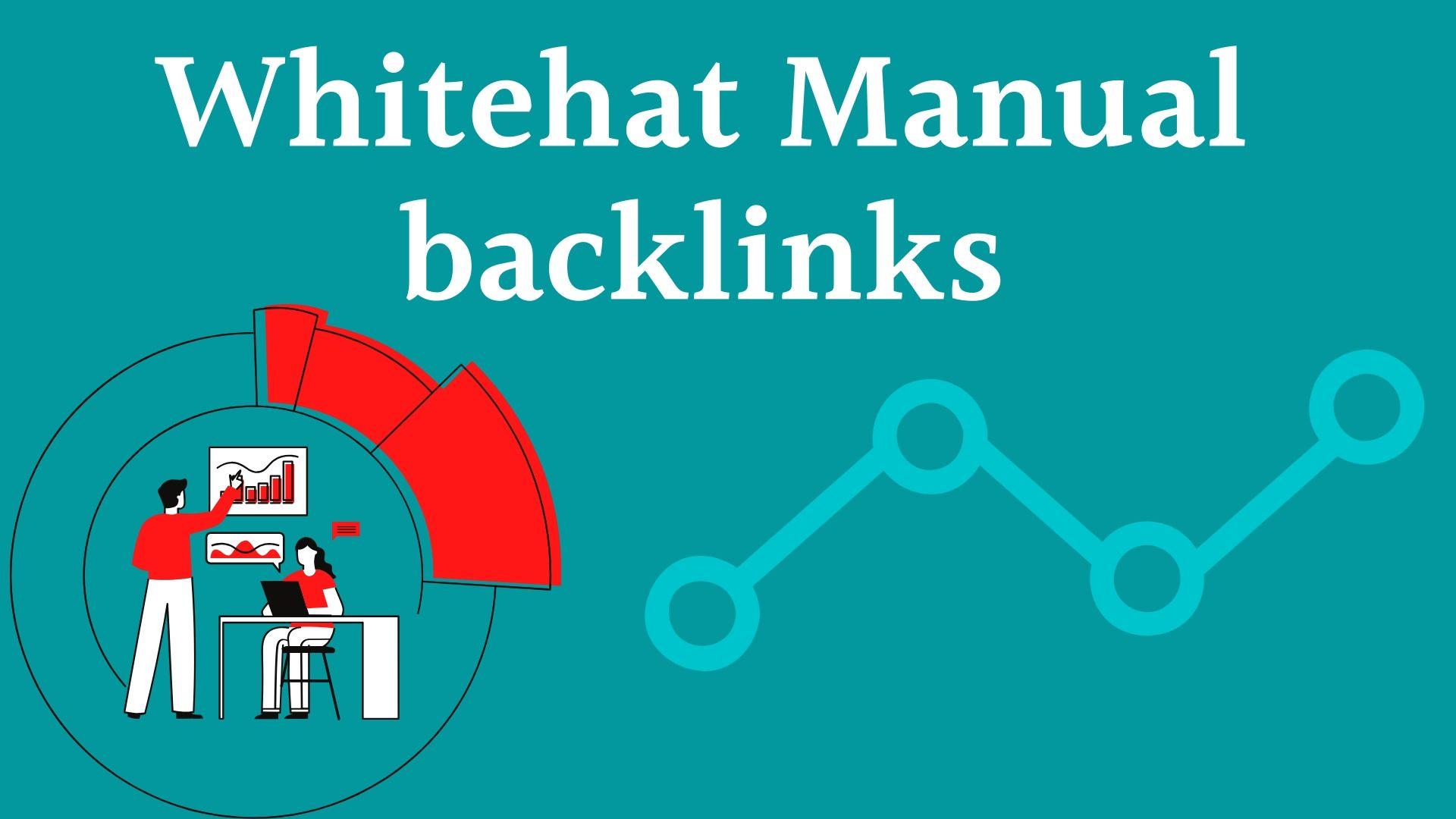 I will do 10 SEO backlinks for your website