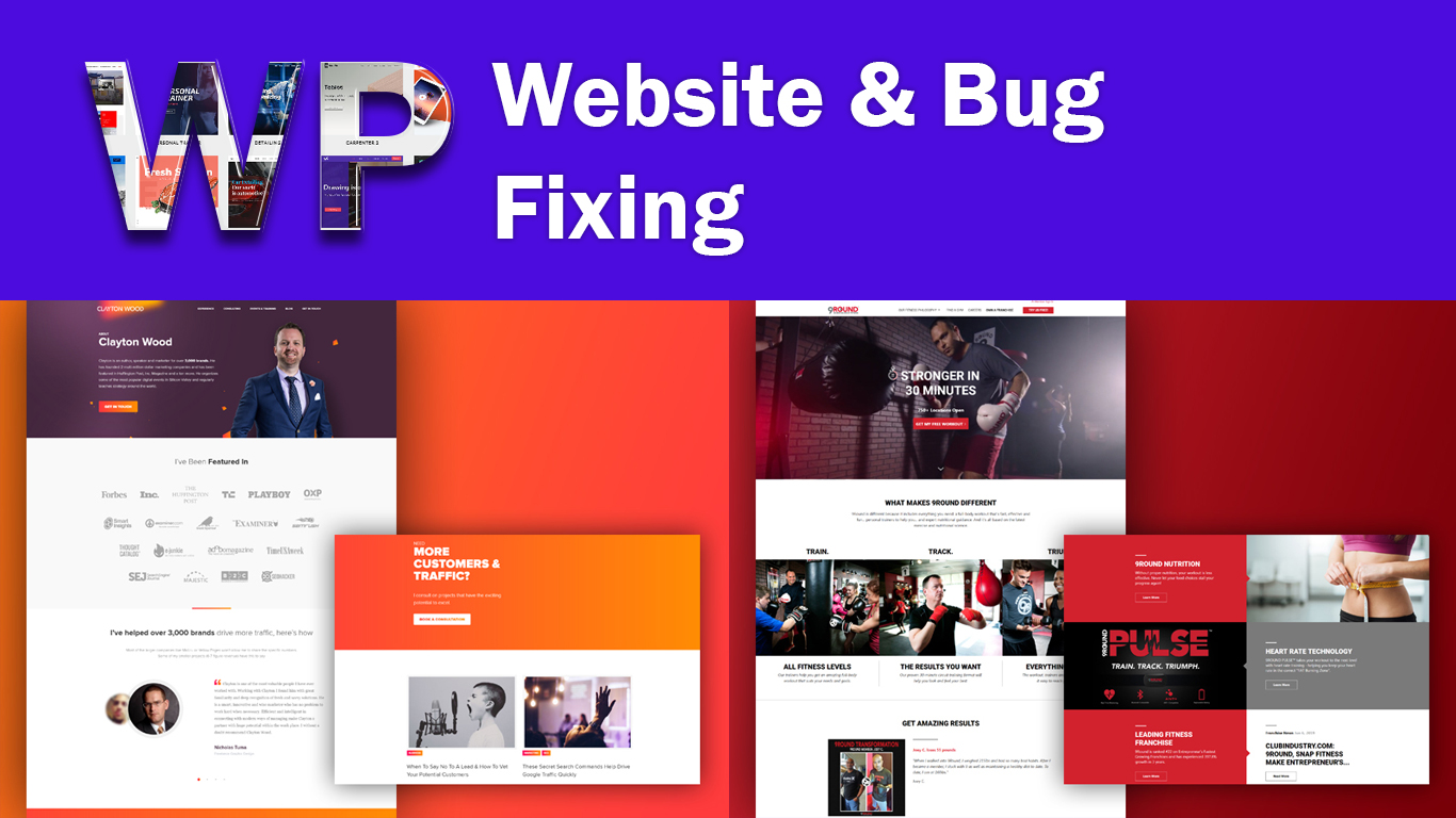 I can fix wordpress websites bugs