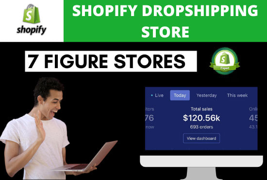 I will build a professional shopify dropshipping store or website