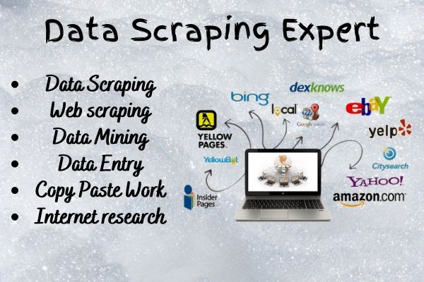 I will do web scraping,  data scraping,  data collection,  data entry