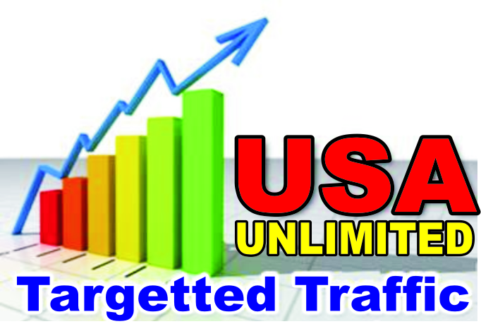 I WILL DRIVE TARGETED USA TRAFFIC TO YOUR WEBSITE,  BLOG OR LINK