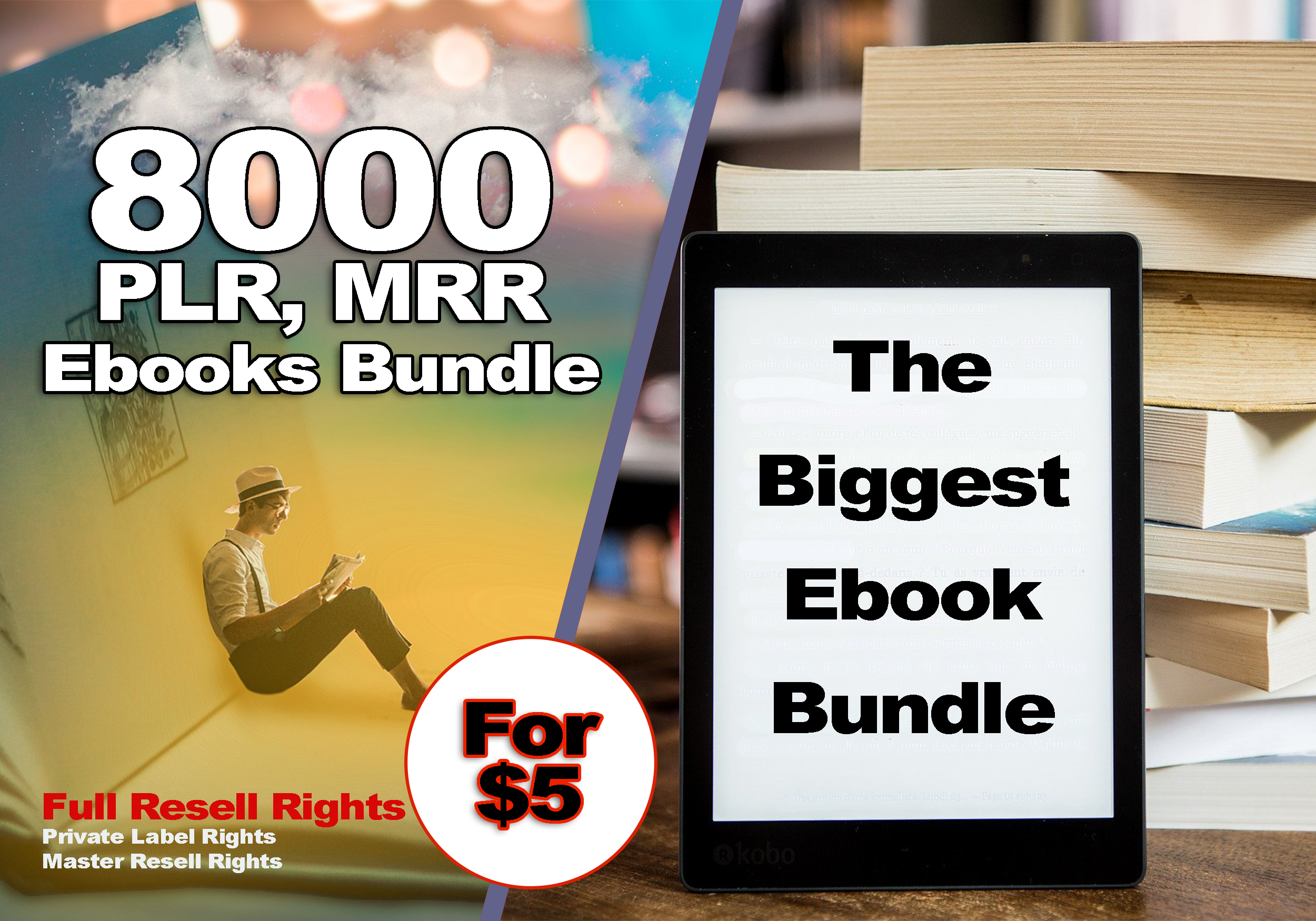 I will give 8000+ PLR eBook Bundle