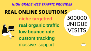 SKYROCKET 300,000 Traffic Worldwide Website Real Promotion From TOP Social Media for