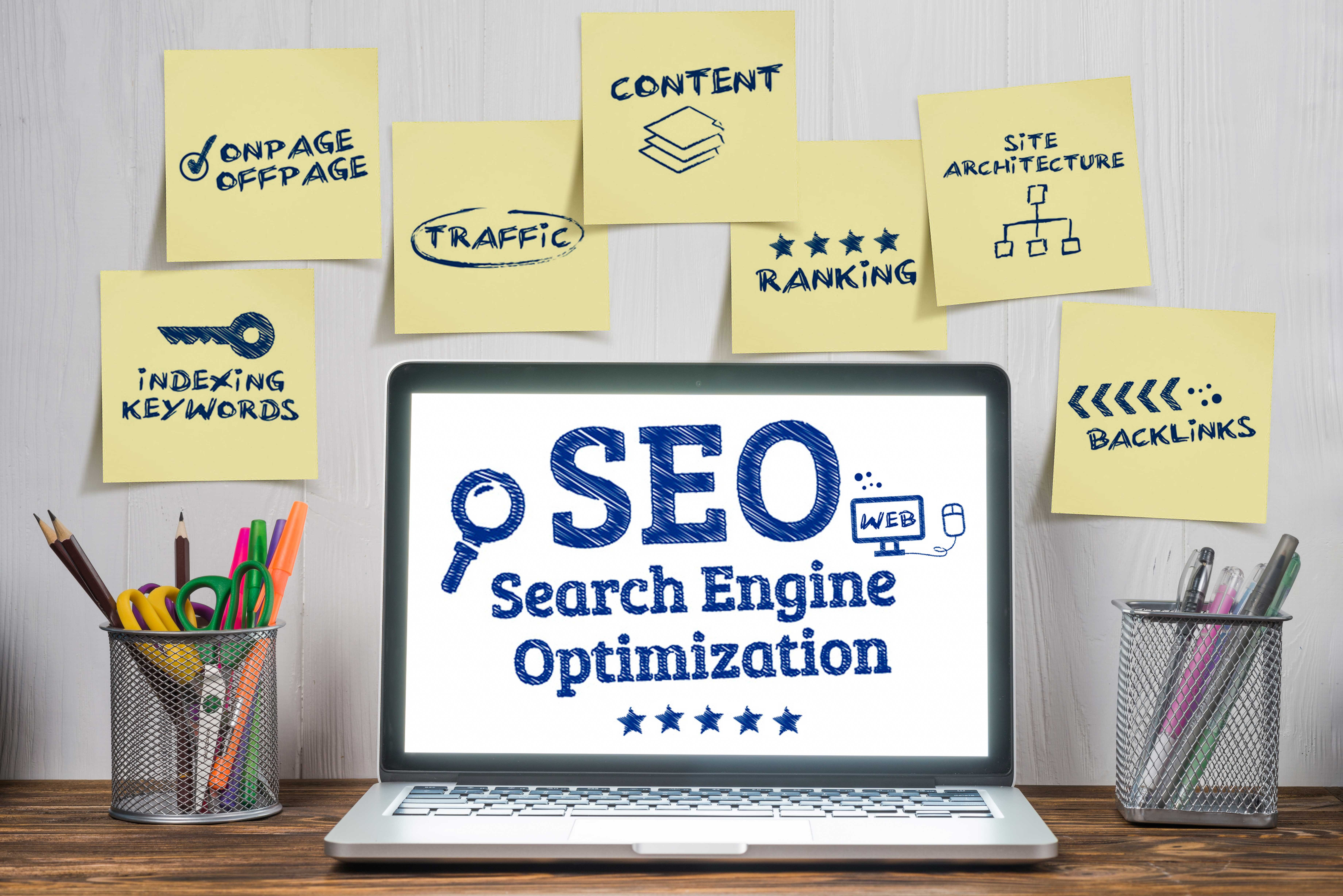 Expert in search engine optimization
