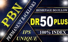 I will create 300 high authority DR 50+ SEO dofollow pbn backlinks