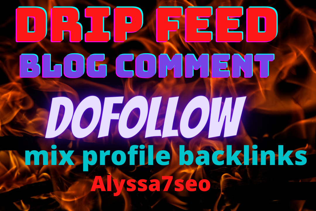 Create 200 Drip feed/blog comment/dofollow/HQ Google first page profile backlinks