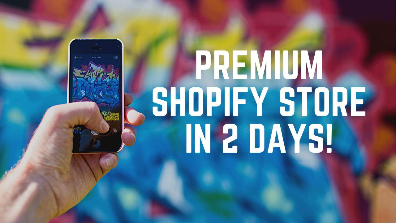 I will build a premium shopify store