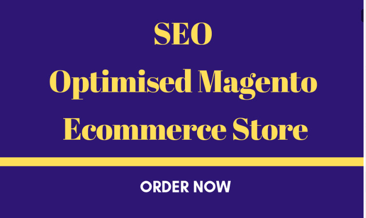I will build an SEO optimised magento ecommerce store