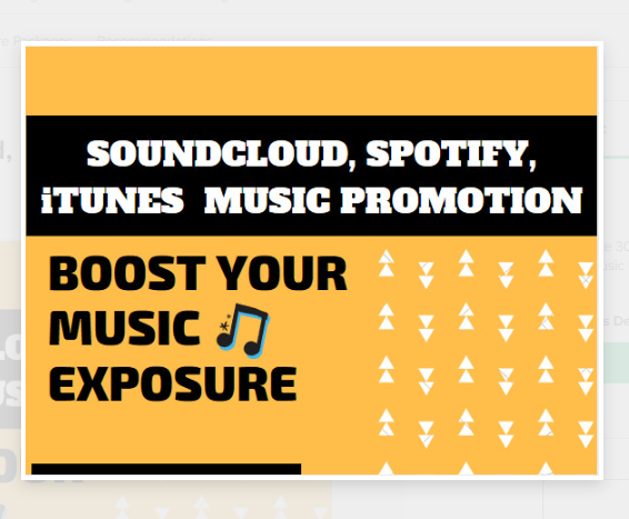 I will do viral,  music promotion to increase best sale