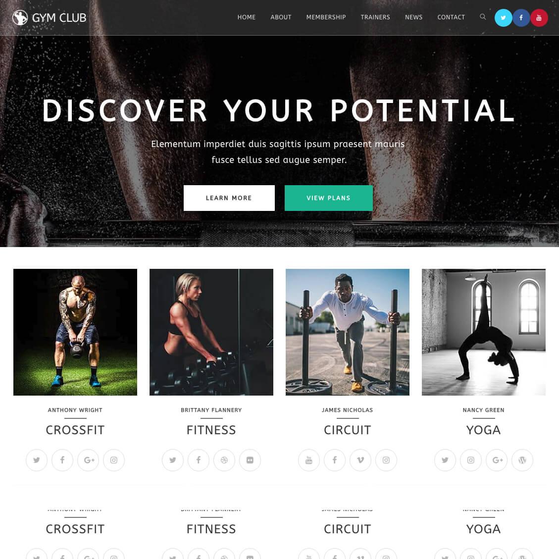 I will create a SEO friendly WordPress website