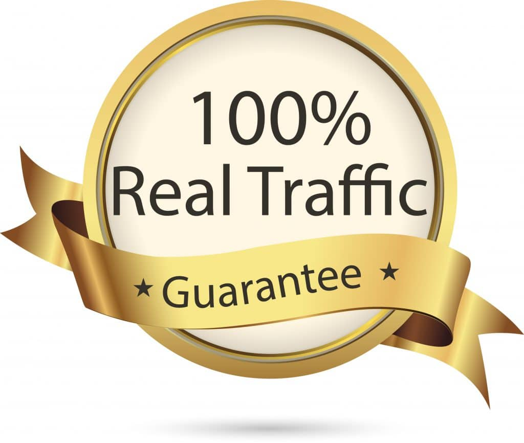 Real ORGANIC SEARCH ENGINE TRAFFIC To Your Website