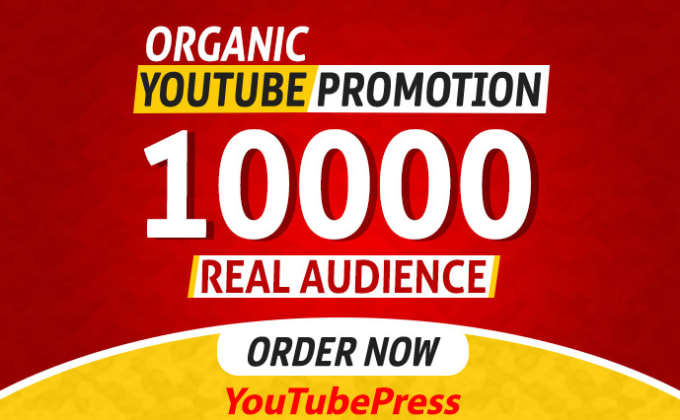 I will do youtube video promotion and social media Marketing in 24 Hours