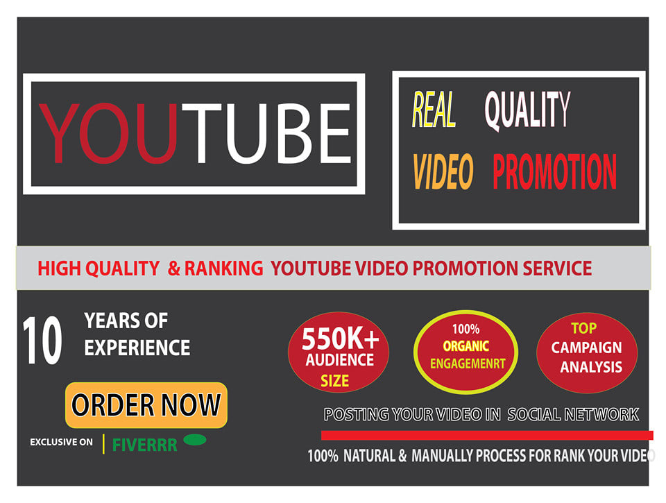 I will do YouTube Video Seo Marketing Promotion for Video in 24 hours