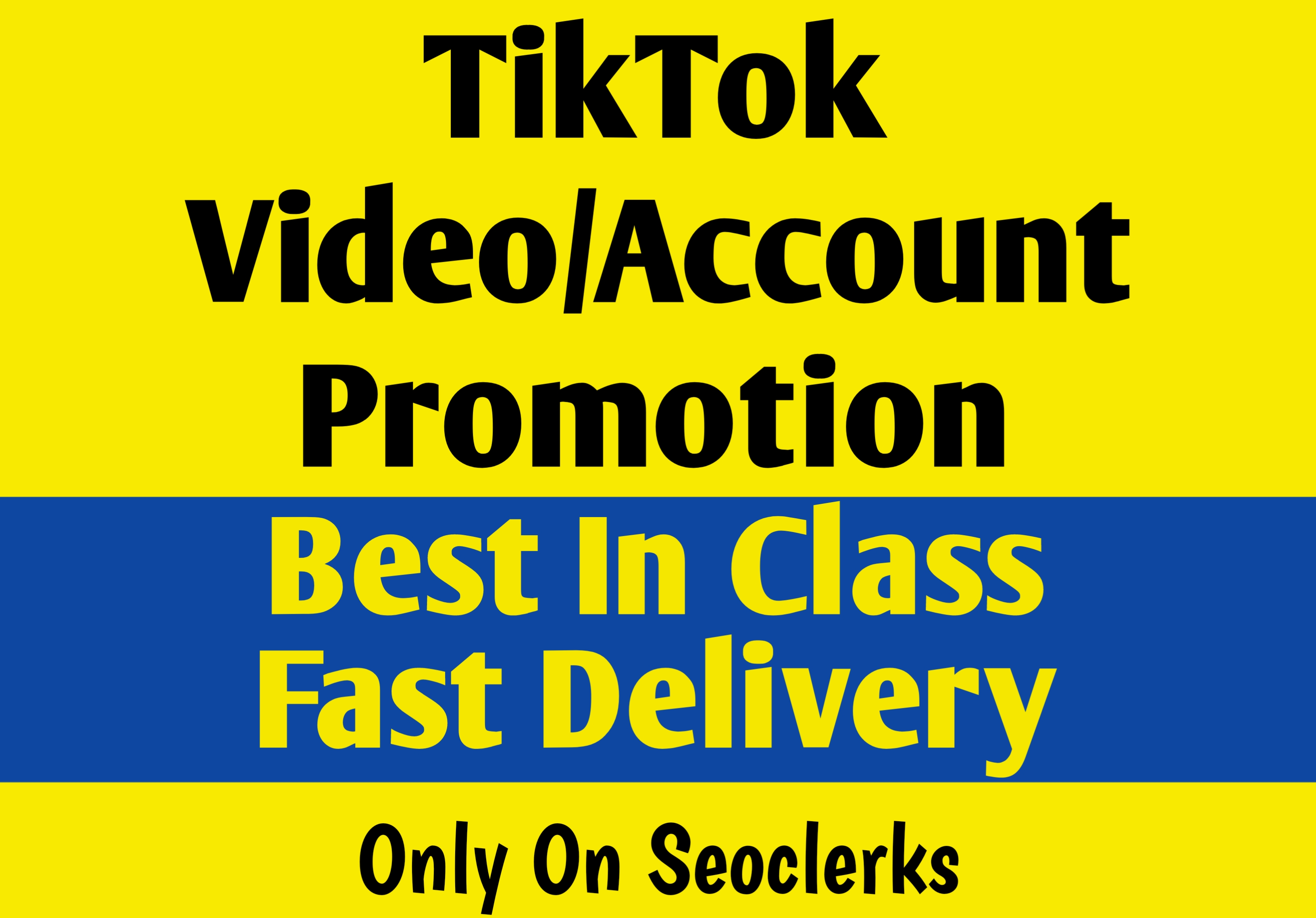 Best In Class TikTok Video Promotion And Fast Delivery