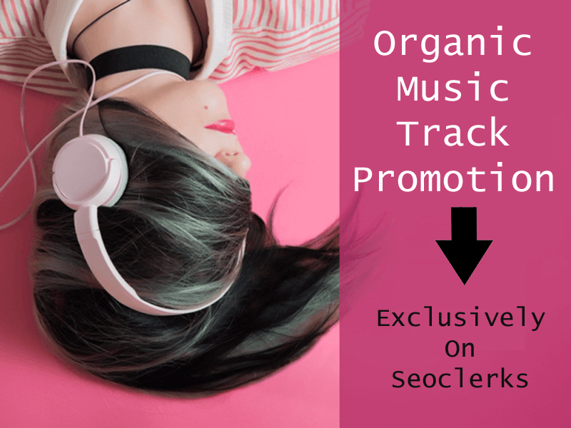 do real organic music promotion for your track and playlist