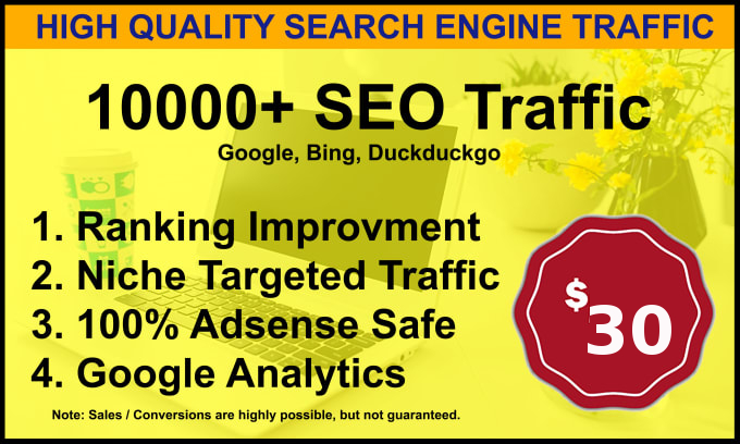 I will send 10,000 Visitors low bounce natural web traffic,  from the USA