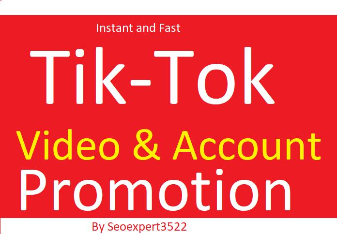 Do Organic TikTok Video Promotion By Social Audience