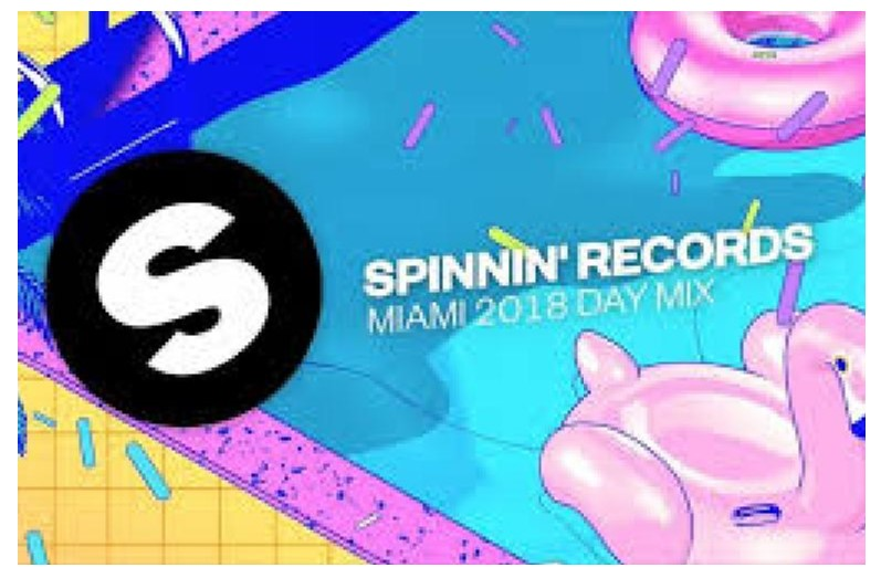 PROVIDE YOU 105 Spinnin Records Talent Poll Votes for your spinnin contest