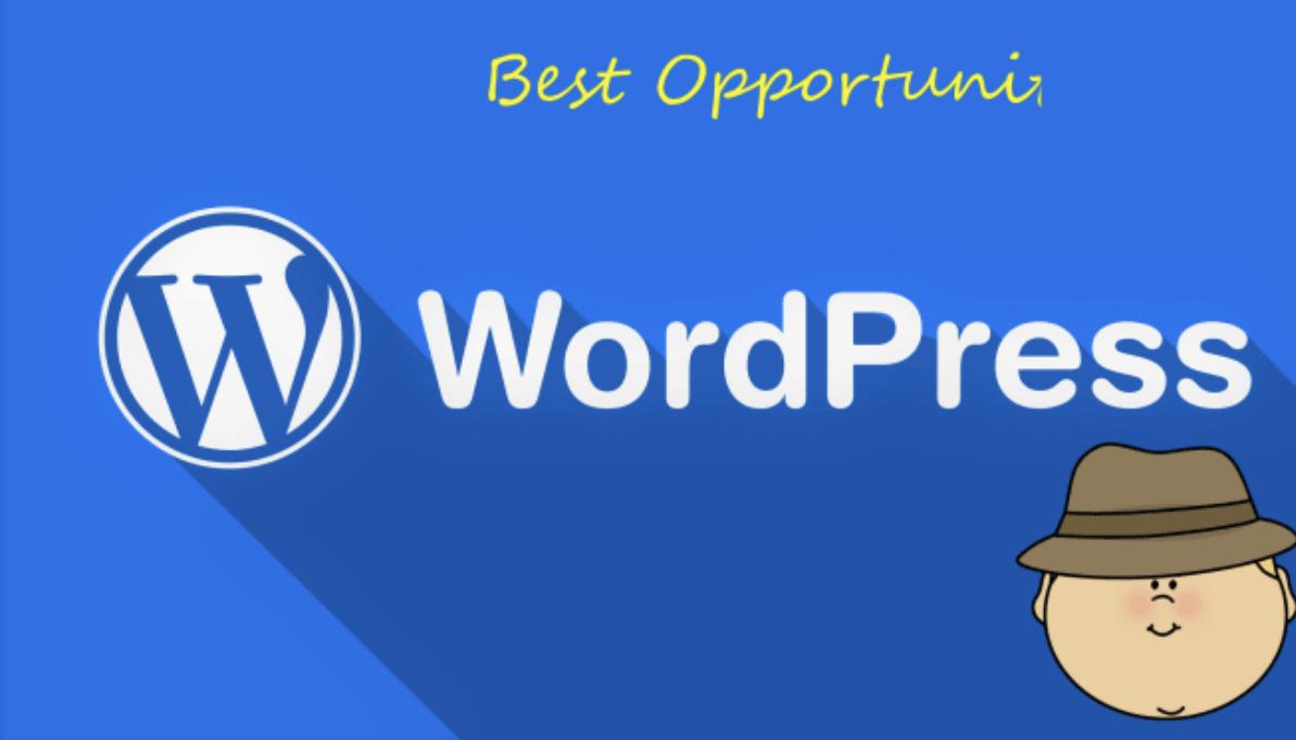 I will create you needed wordpress site.