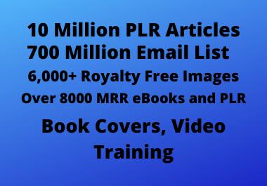 More than 700 Million PLR articles,  E mail list,  PLR ebooks,  MMR e books,  Royalty free media