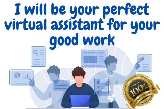 I will be your perfect virtual assistant for your good work