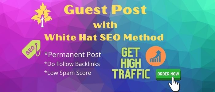 I will rank your site by guaranteed SEO through high da guest post
