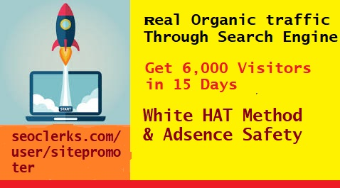 Get Real Organic Traffic Through Google search engine 400+ daily for 15 Days