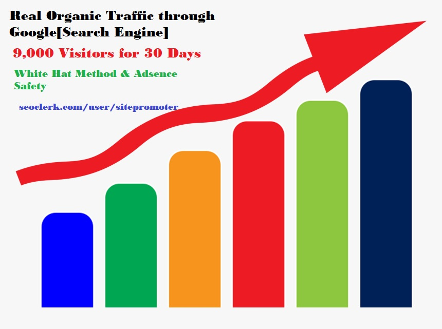 Real organic traffic through google search engine 300+ daily for 30 days