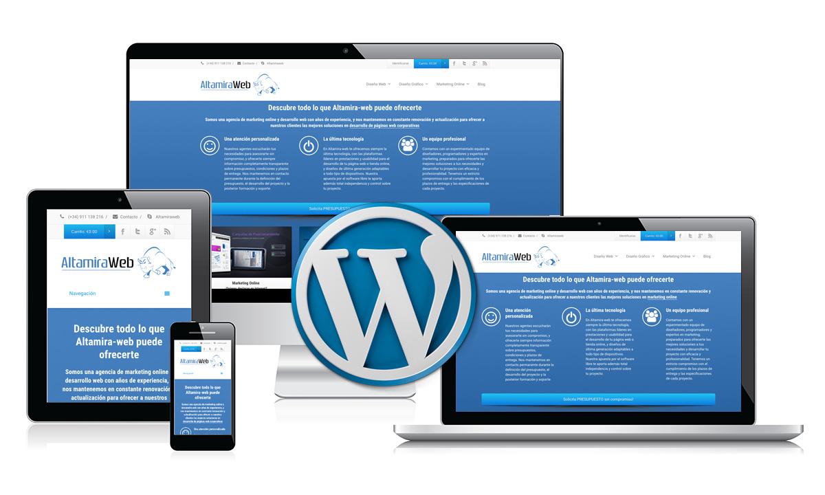 I will develop a professional wordpress website design