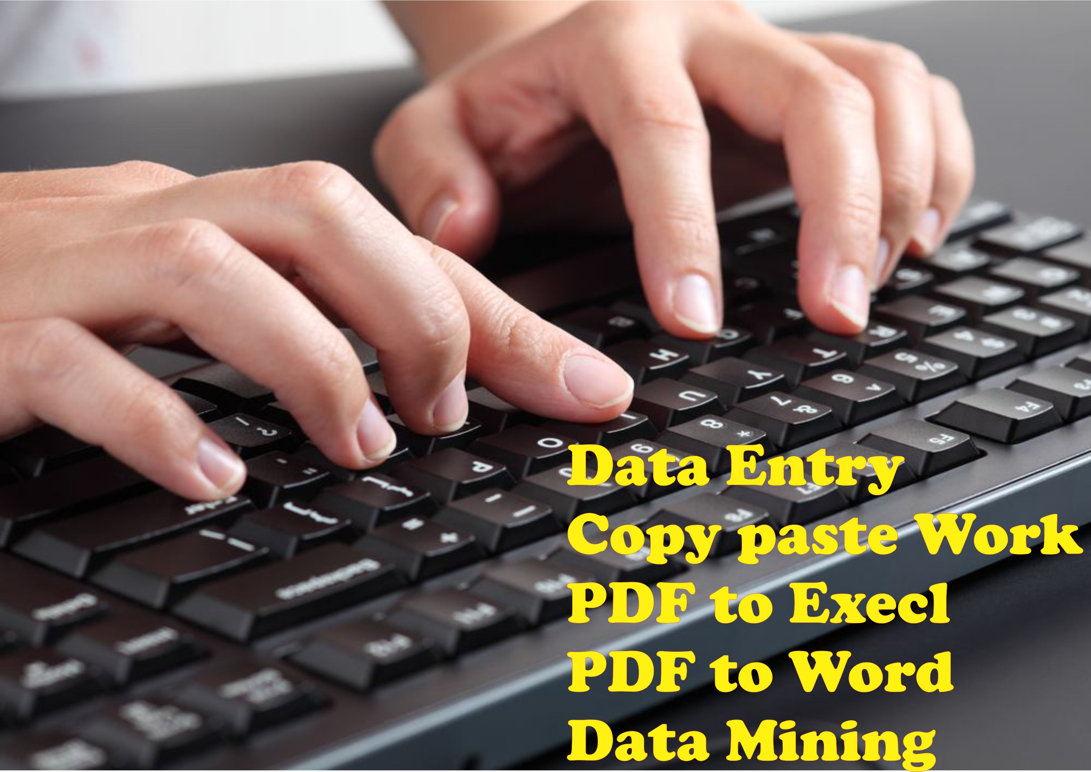 I Will Do Any Kind Of Data Entry Work Within 2 Hours