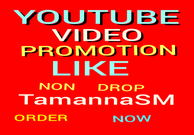 SUPPER FAST YOUTUBE VIDEO PROMOTION NON DROP AND LIFE TIME GUARANTEED WITH SUPER FAST