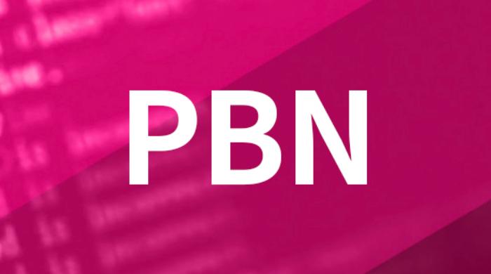 50 homepage PBN high qulaity DA 30 plus