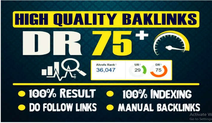 provide 10 PBN DR75+ dofollow permanent homepage pbn backlinks