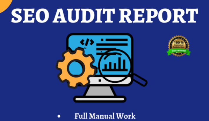 Provide you High quality SEO Audit Report manually for your website