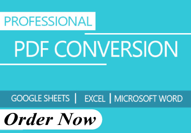 I will do manually typing work,  convert document,  PDF to word,  handwritten text