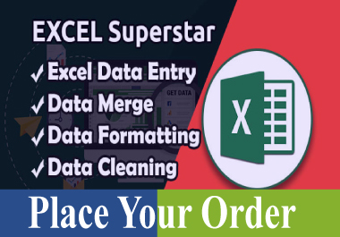 I will be your excel hero and do excel data entry