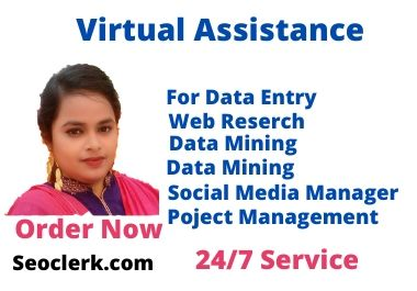 I will be your personal virtual administrative assistant