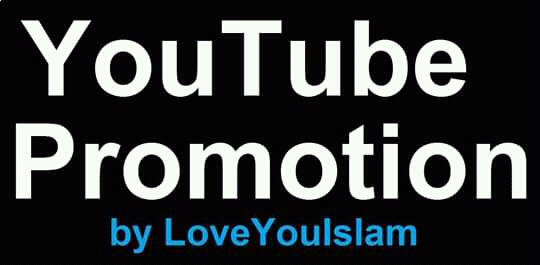 Great offer social media YouTube video promotion marketing